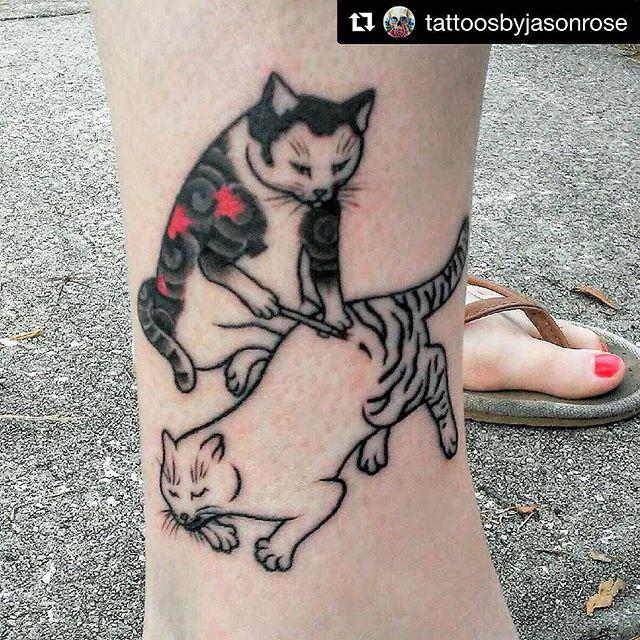 cat Jason Rose